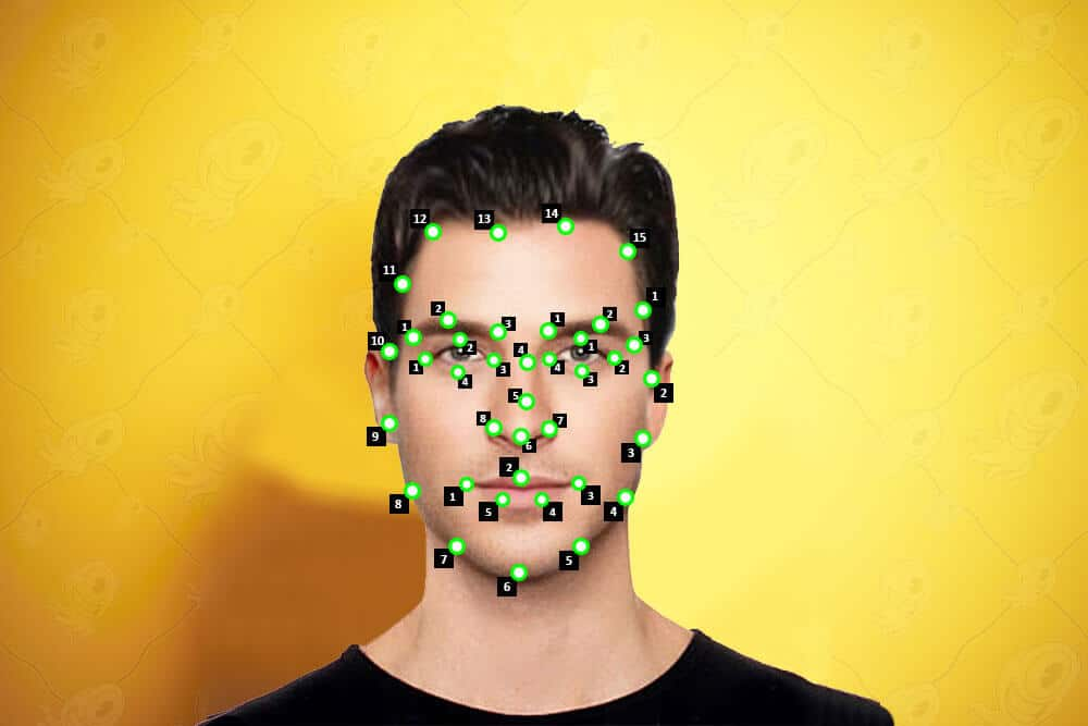 point-annotation-for-facial-recognition